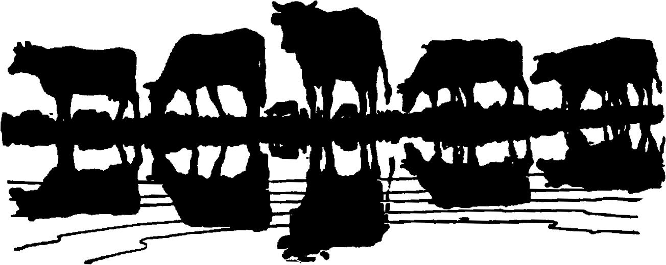 Longhorn clipart cattle roundup. Drive show herd