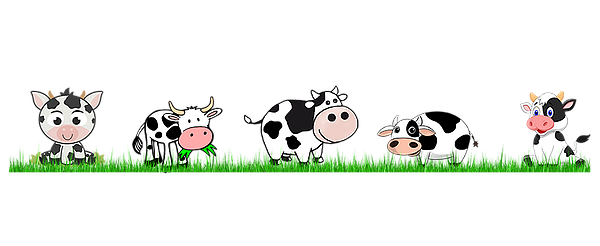 Cattle clipart cattle herd. Holy cow the lets