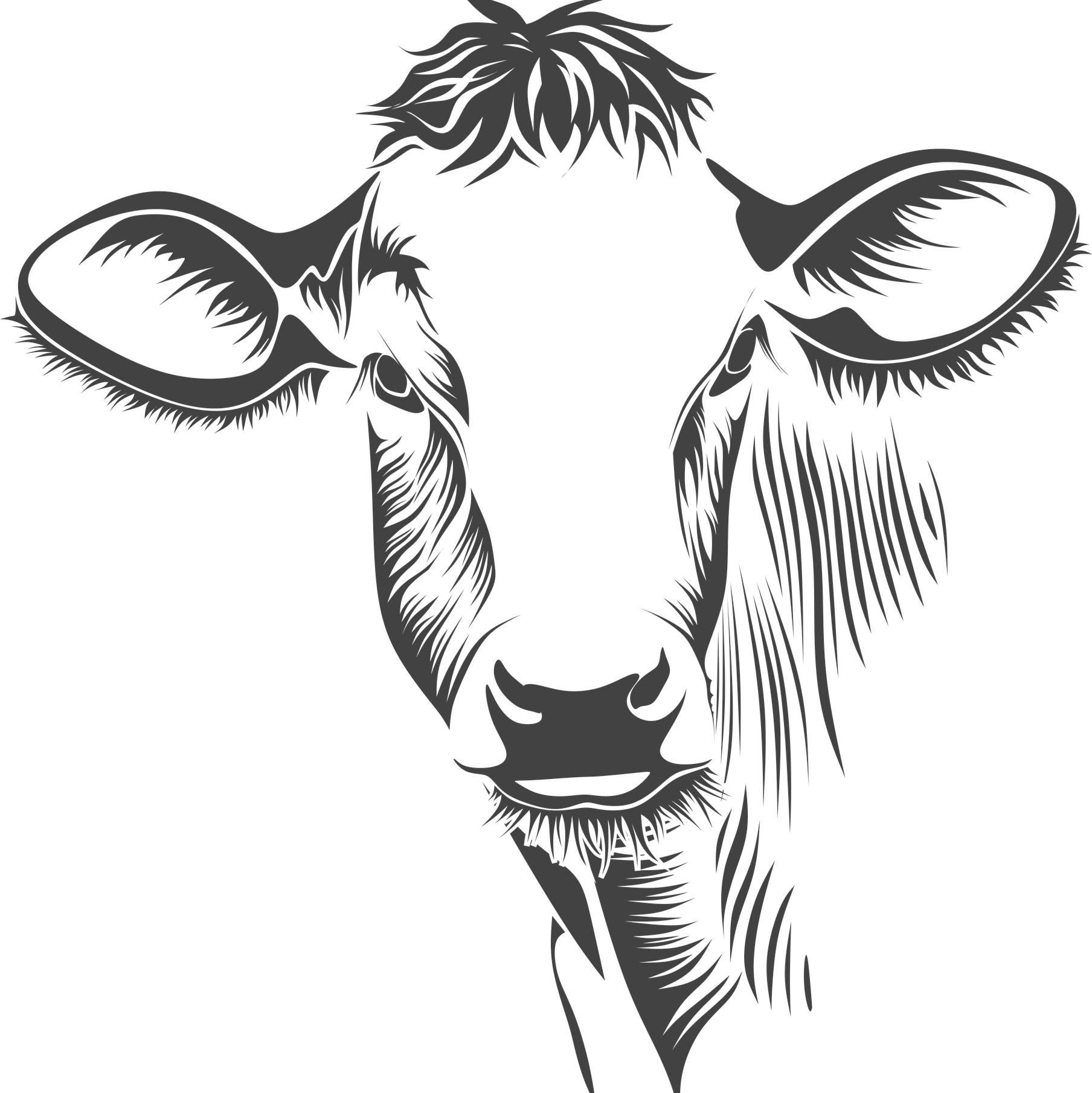 Off family ranch happy. Longhorn clipart zentangle