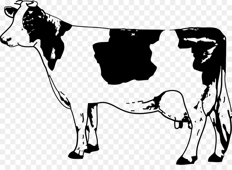 Cattle clipart cow drawing. Texas longhorn jersey clip