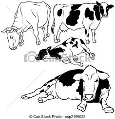 Great set of cows. Cattle clipart cow drawing
