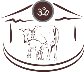 Save cows kriya yoga. Cattle clipart cow indian