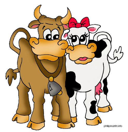 Cattle clipart cow indian.  best cows images