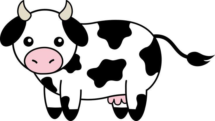 Cattle cute cow