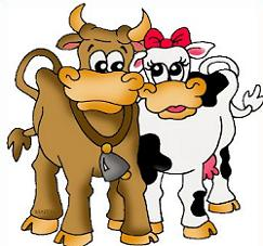 Free romantic cows. Cattle clipart male cow