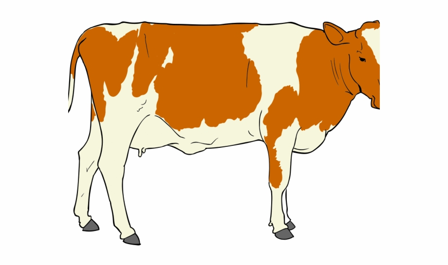 Beef realistic free png. Cattle clipart male cow