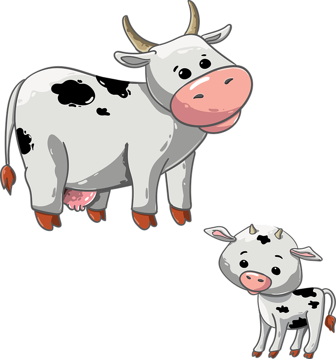 Cattle clipart male cow. Free photo animal calf