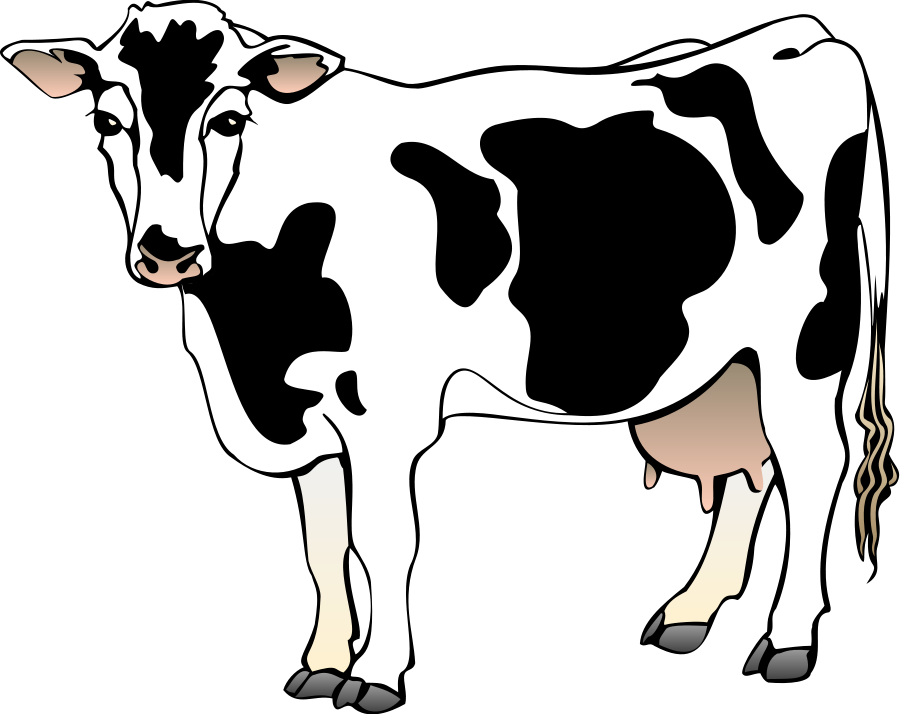 Clipart cow. With transparent background panda