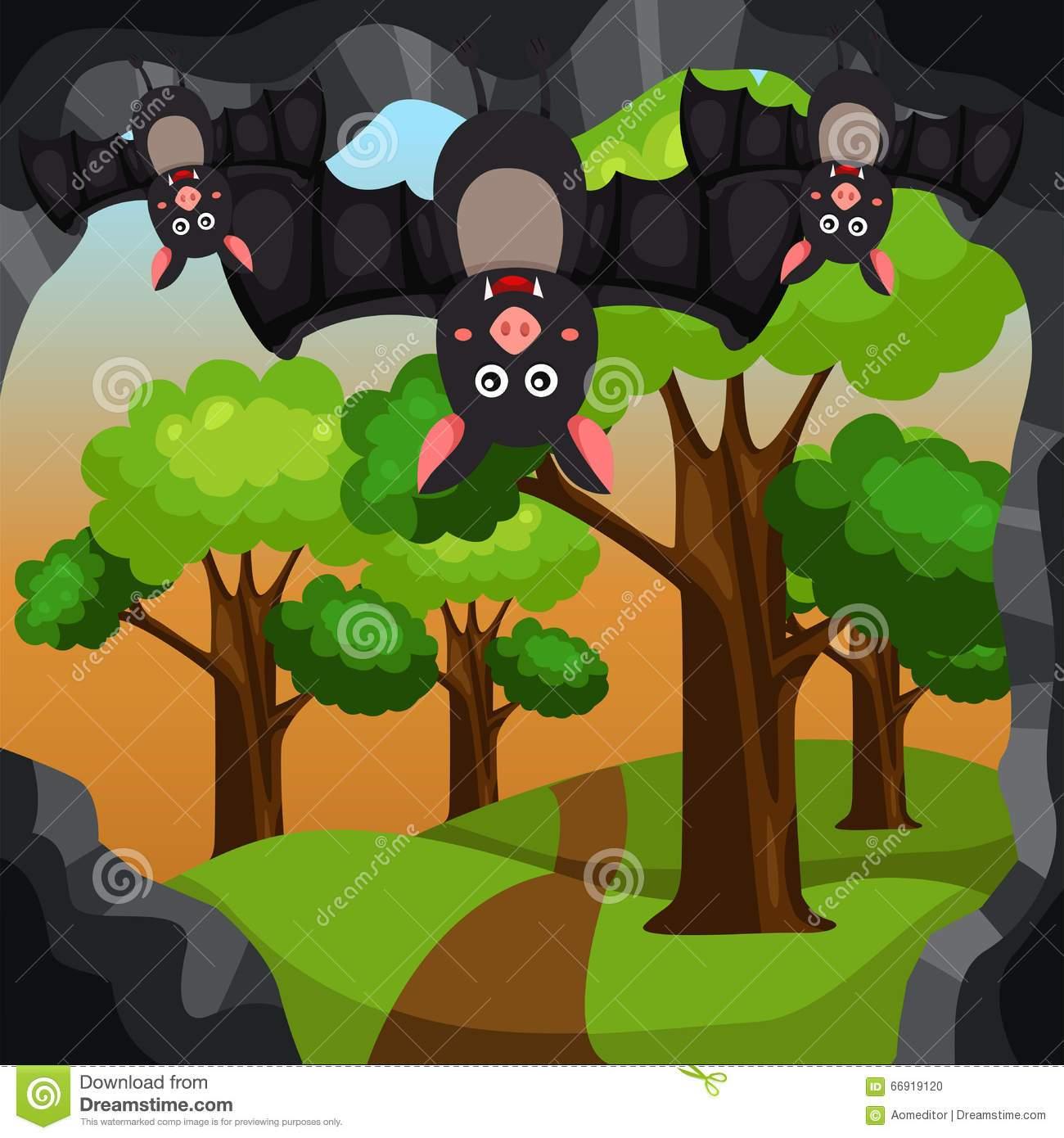 Portal . Cave clipart bat cave