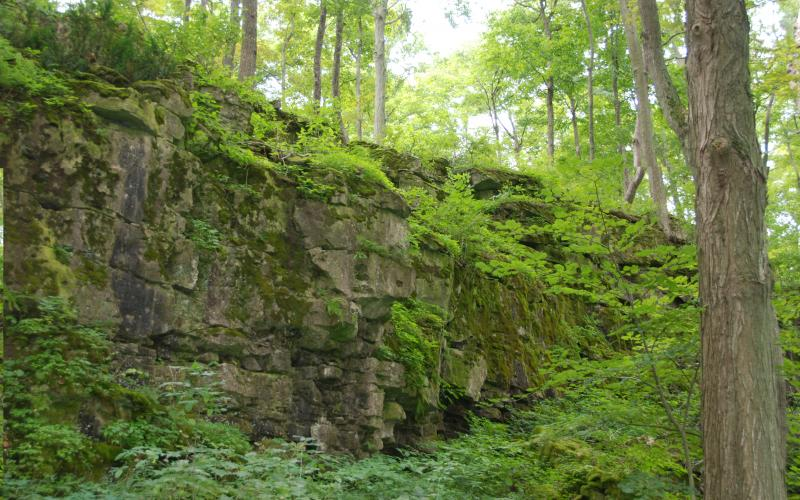 Springs conservation area niagara. Cave clipart forest cave
