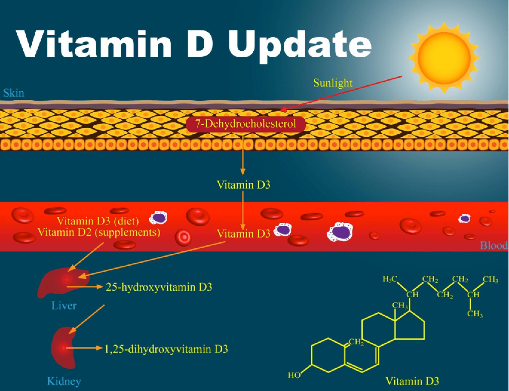 Caveman clipart vitamin d. Archives the bjj update