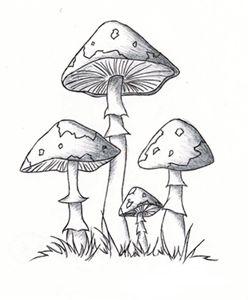 Cd clipart sketch. Mushroom mintak pek pinterest