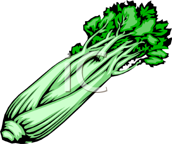 Bunch of image foodclipart. Celery clipart