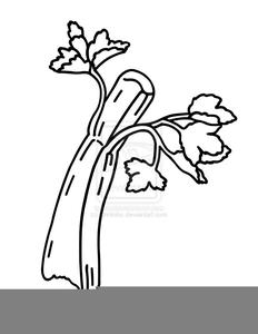 Free images at clker. Celery clipart celery stalk