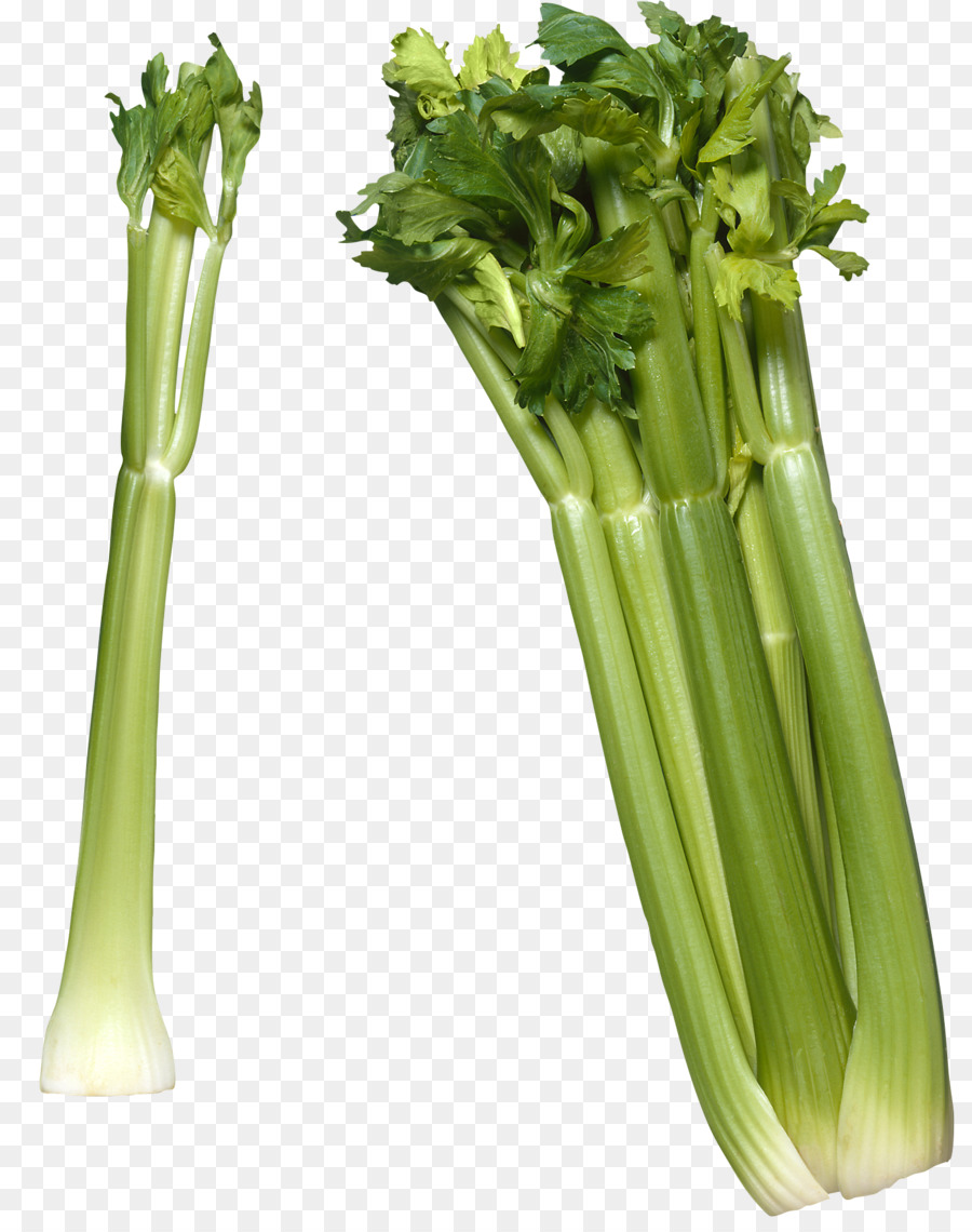 Celery clipart cellery. Raw foodism vegetable celeriac