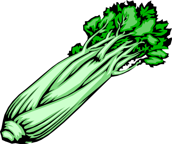 Stick cliparts zone . Celery clipart chopped
