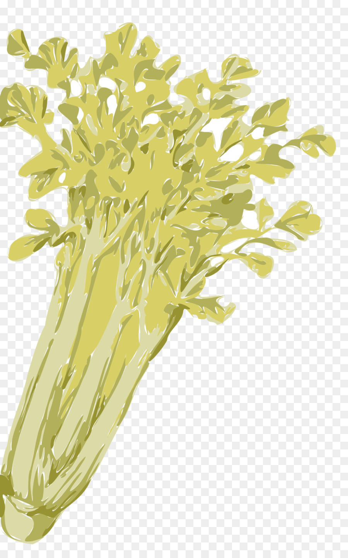 Celery clipart clip art. Download celeriac vegetable
