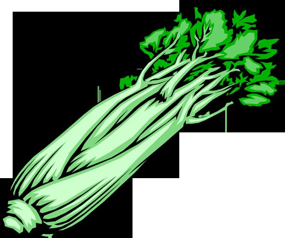. Celery clipart cut