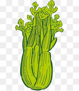 Celery clipart cute. Cartoon png vectors psd