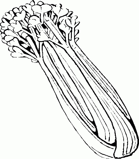 Celery clipart drawn. Beautiful of black and