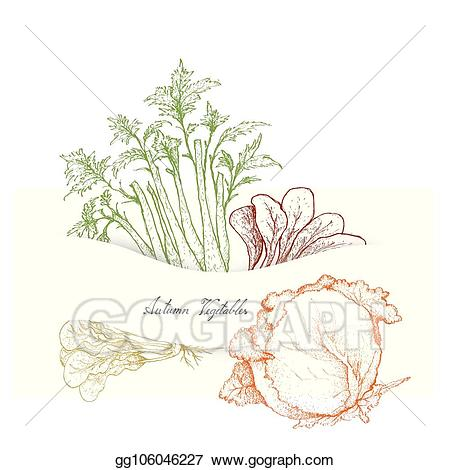 Celery clipart drawn. Vector art hand of