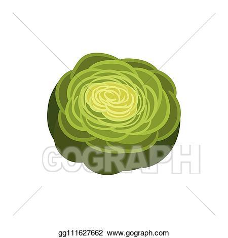 Eps vector on white. Celery clipart slice
