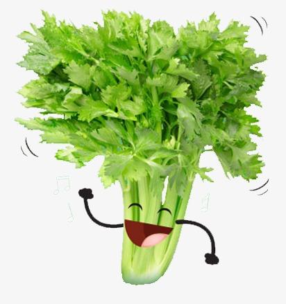 Creative vegetables happy png. Celery clipart vegetable