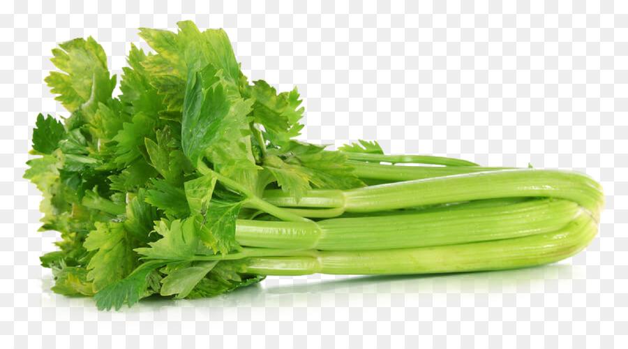 Spring background food lettuce. Celery clipart vegetable