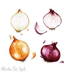 Celery clipart watercolor. Food leek and spring