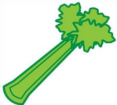 Free. Celery clipart