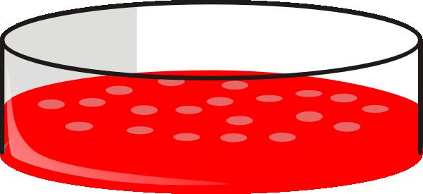 Cho Cell Petri Dish Clip Art at Clker