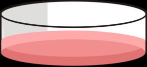 Cell clipart cell culture. Cho petri dish clip