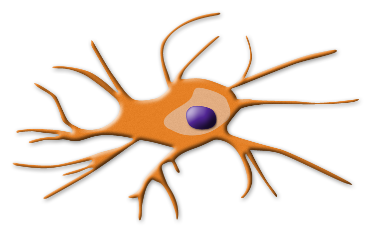 Cells clipart dendritic cell. Nephron power topic discussion