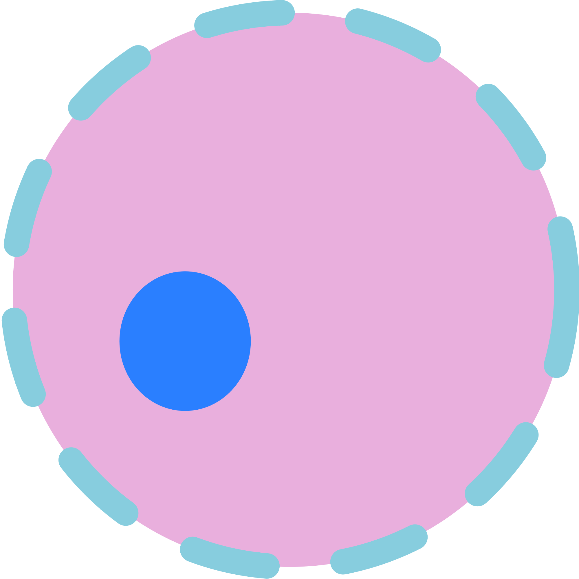 File nucleus wikimedia commons. Cell clipart svg