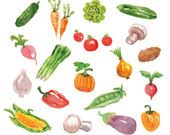 Cell clipart vegetable. Watercolor etsy cliparts vegetables