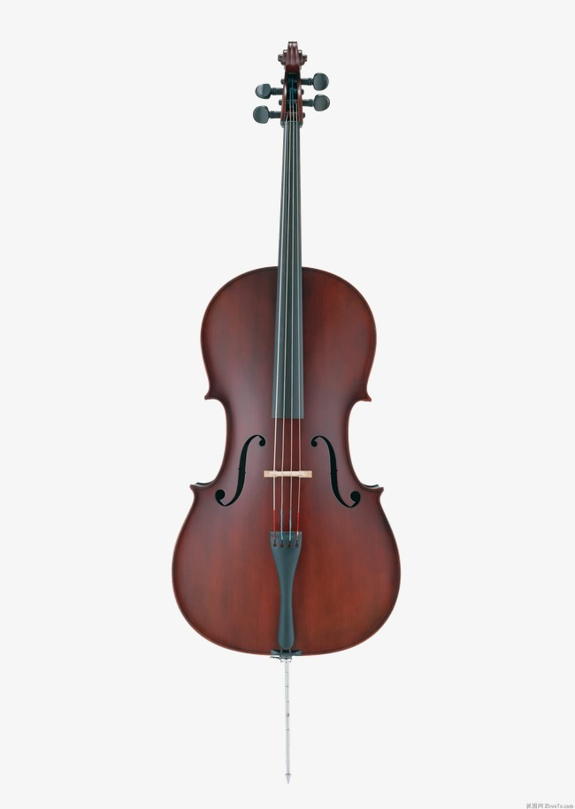 Music musical instruments violin. Cello clipart