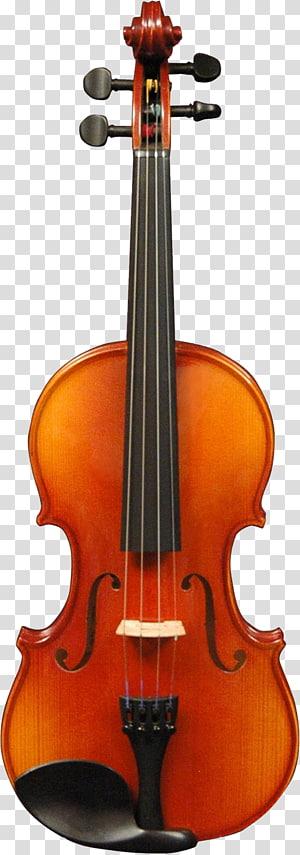 Cello clipart broken. Double bass guitar string
