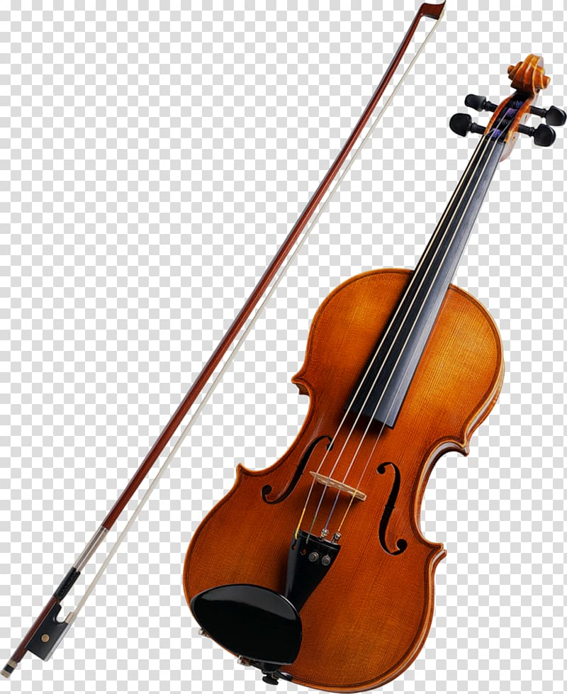 Violin musical instruments string. Cello clipart fiddle