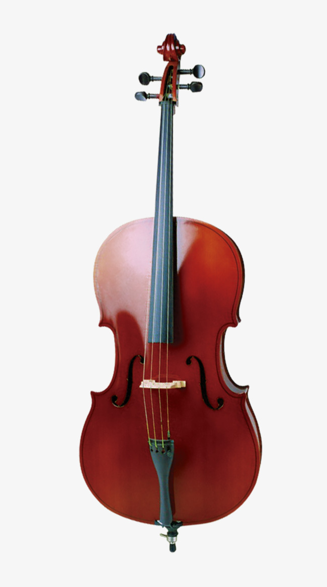 Real musical instruments red. Cello clipart music