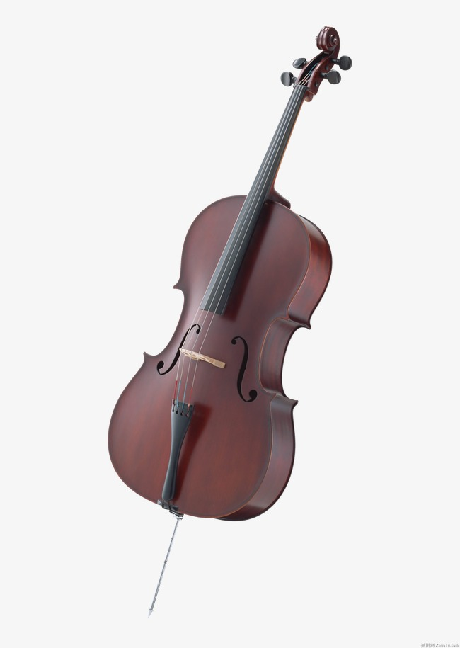 Western musical instruments culture. Cello clipart music