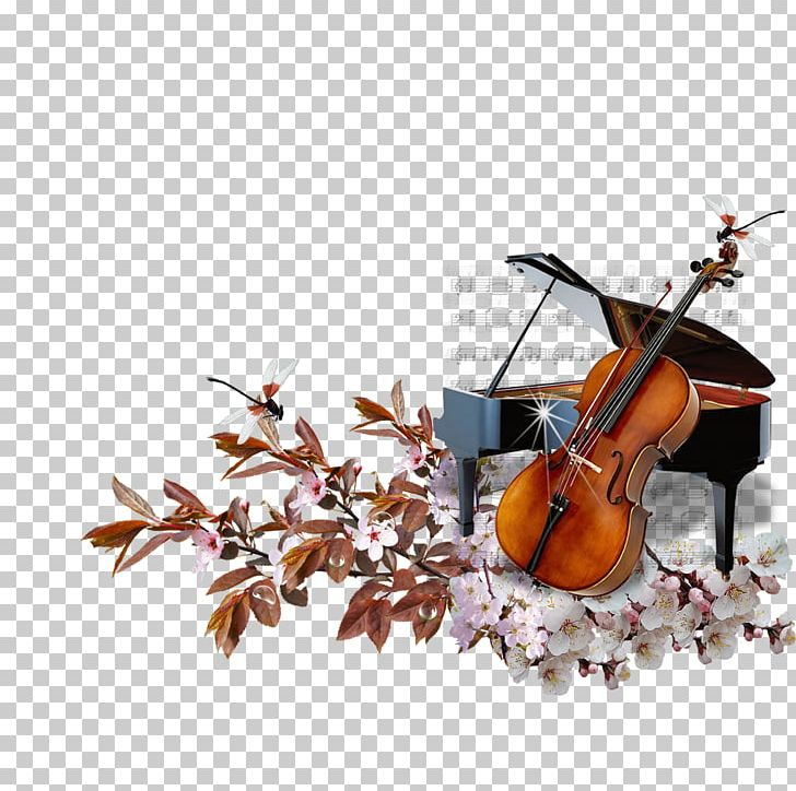 Cello clipart piano. String musical instrument png