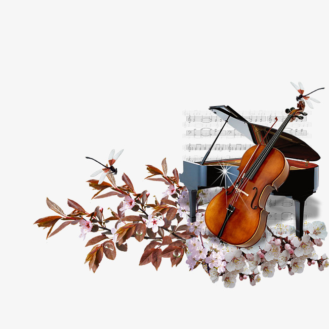 A flowers png image. Cello clipart piano