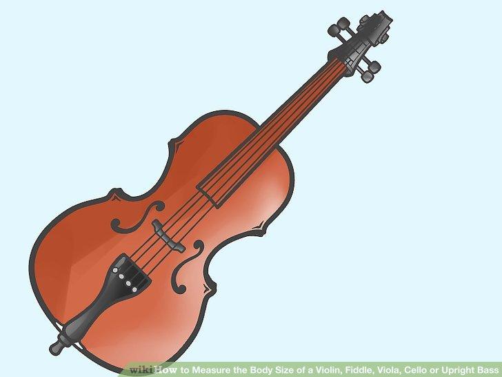 How to measure the. Cello clipart small violin