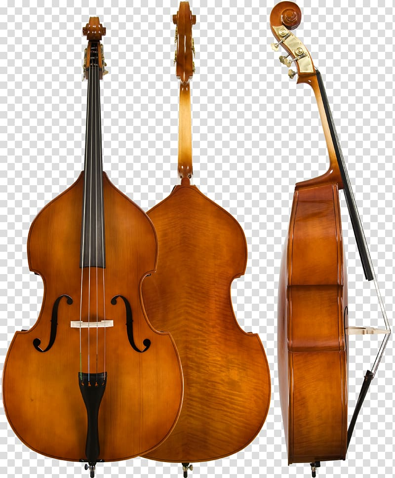 Double guitar instruments violin. Cello clipart string bass