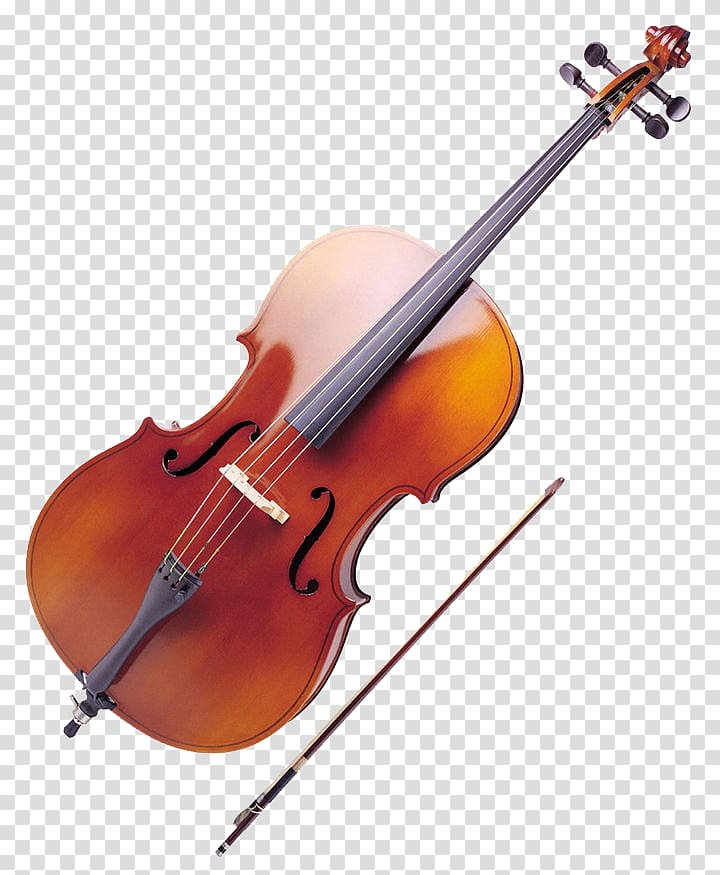 Ukulele musical instrument double. Cello clipart viola