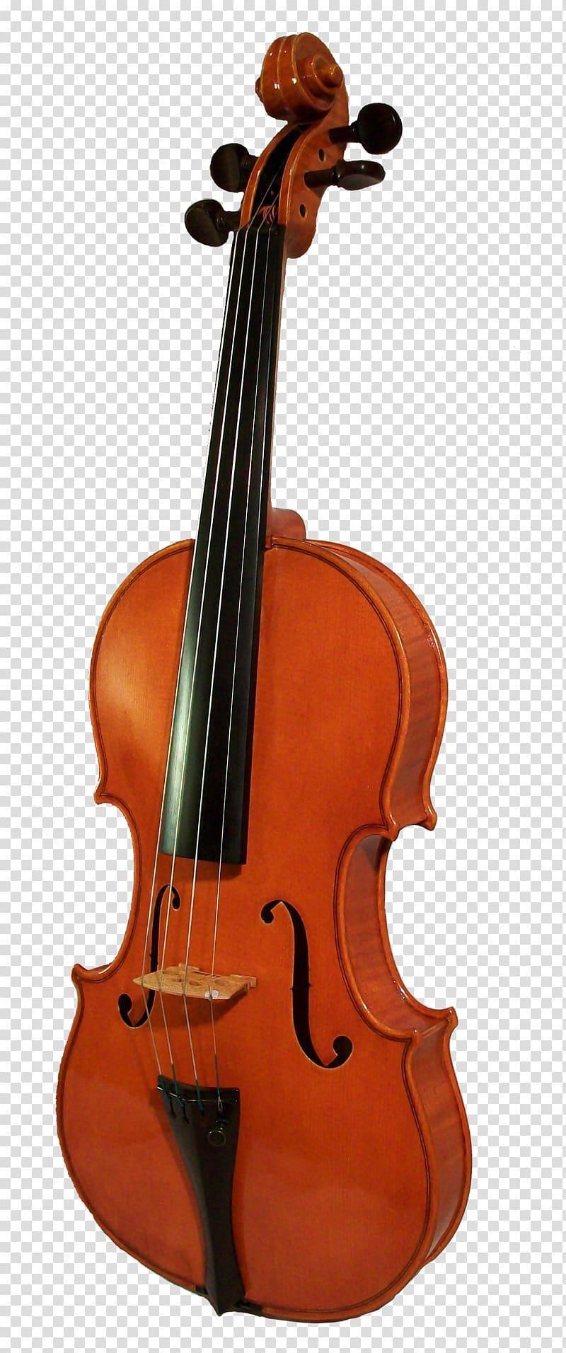 Musical instrument transparent . Cello clipart violin