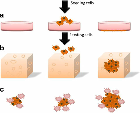 Cells clipart cell culture. Fig a schematic diagram