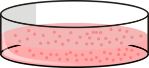 Cells clipart cell culture. Dish with clip art