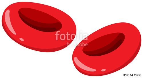Close up stock image. Cells clipart red blood cell