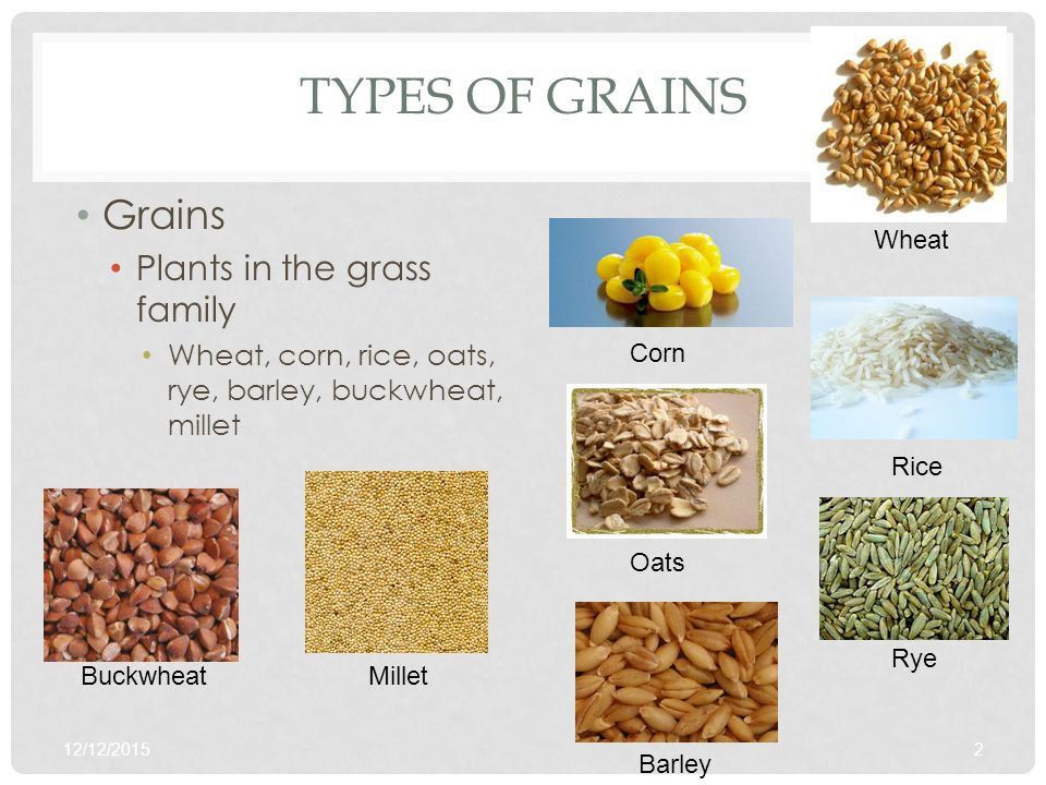 Products foods i obj. Cereal clipart grain product